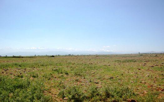 Vente terrain viabilisé titré au calme la route tahnaout