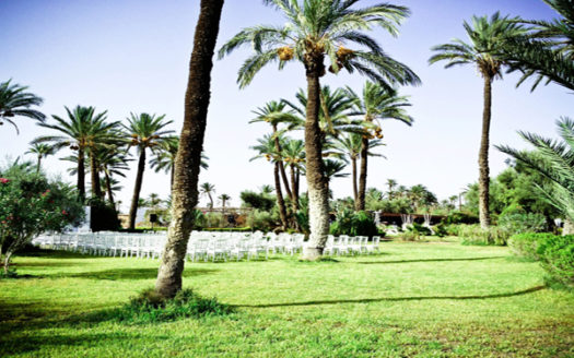 Vente terrain prés du Club-Med palmeraie