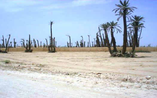 Vente terrain titré Sur la route de Fes