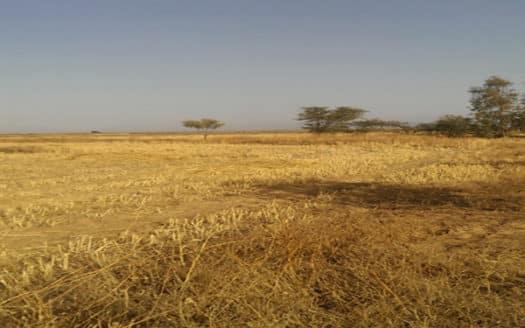 Vente un hectare titré viabilisé sur la route du barrage